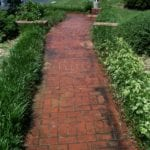 Walkway Cleaning
